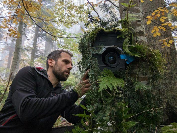 Naturfotograf beim Aufbau einer Fotofalle für Bären, Slowenien