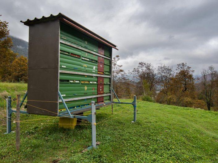 Bienenstock mit Elektrozaun geschützt