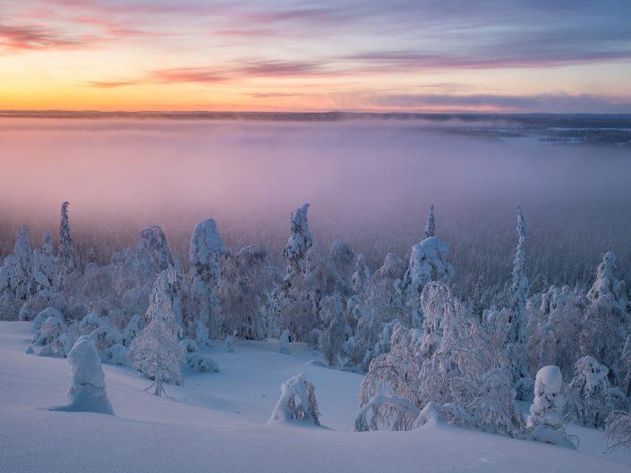 Winterlandschaft mit Lichtstimmung in Luosto, Finnland