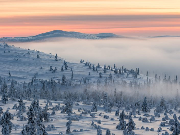 Winterlandschaft im Pallas Yllästunturi Nationalpark, Finnland