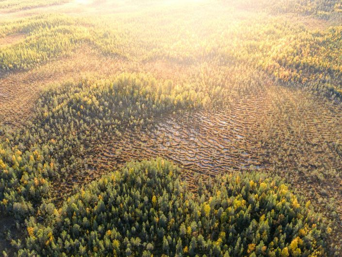 Muddus Nationalpark, Luftaufnahme, Schweden