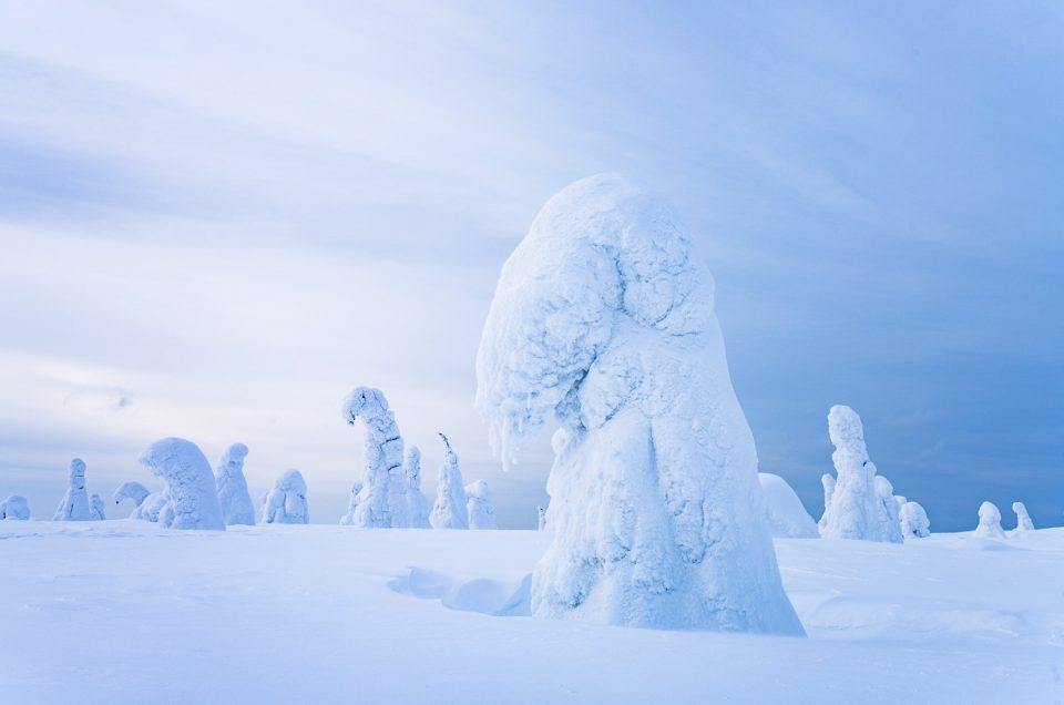 Finnisches Winterwunderland