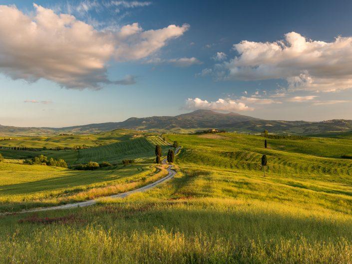 Landschaft bei Pienza