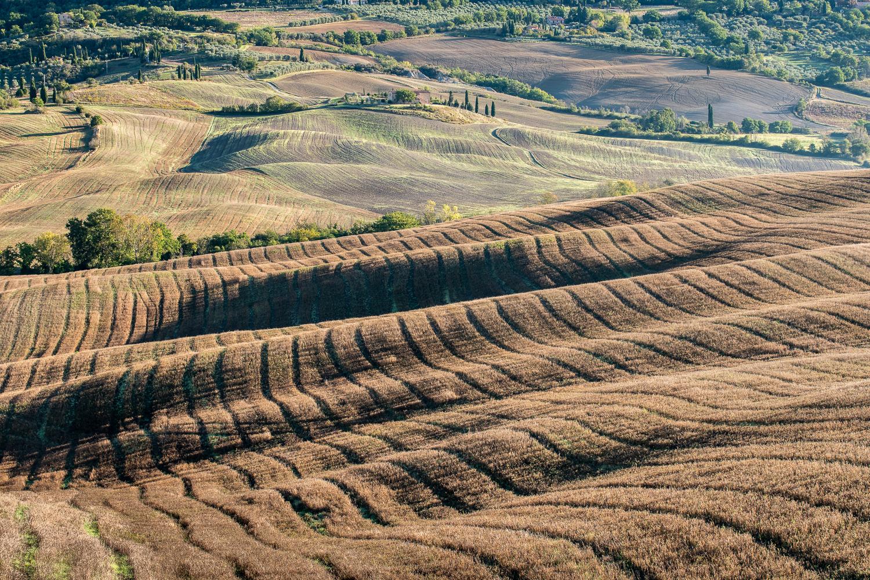 Herbstliche Felder Toskana