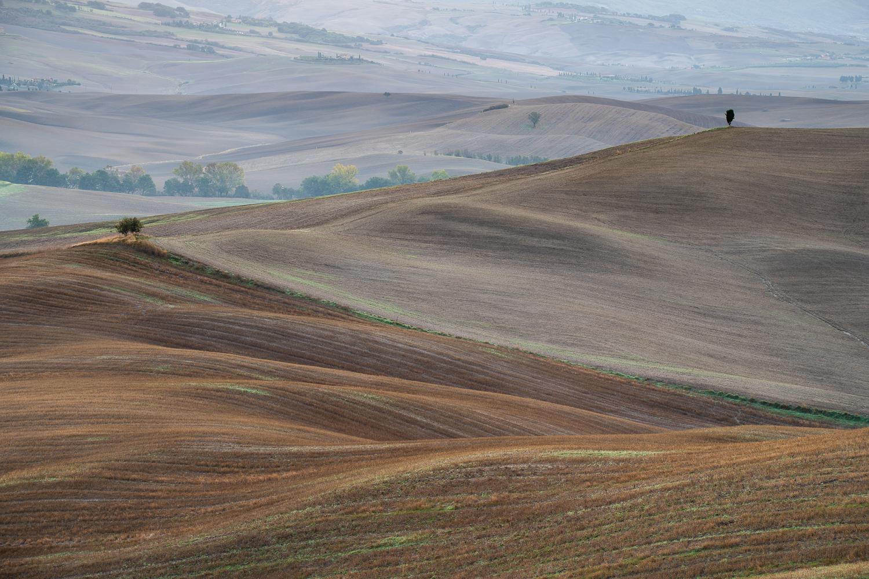 Felder und Hügel der Crete Senesi
